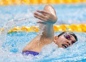 女子800メートルリレー予選 力泳する第2泳者の白井璃緒