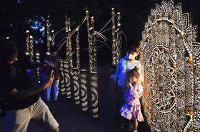 幻想的な風景を楽しむ来場者=海陽町大里の大里八幡神社