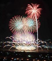 八代市街地を彩ったサプライズ花火=23日夜、同市の竜峰山から撮影(木村彰宏)