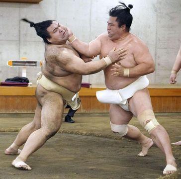 合同稽古で高安(左)と相撲を取る妙義龍=両国国技館の相撲教習所