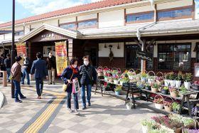 花の寄せ植えを備後庄原駅前に並べた「駅前フェスタ」