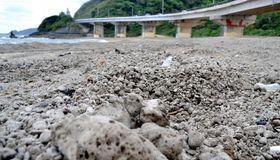 漂着した大量の軽石=22日、大宜味村津波・平南川の河口